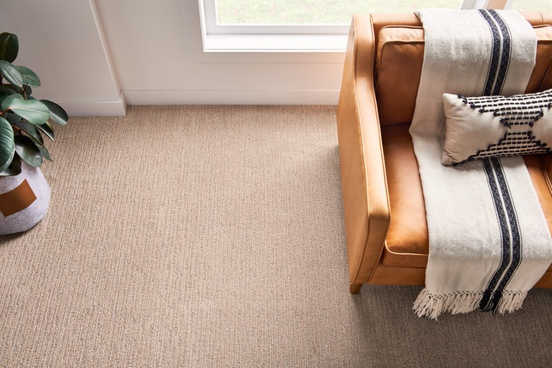 Subtle touch Carpet flooring | Carpet Your World