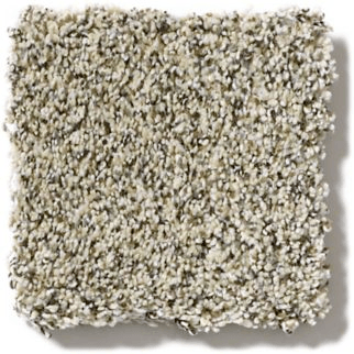 Carpet texture | Carpet Your World