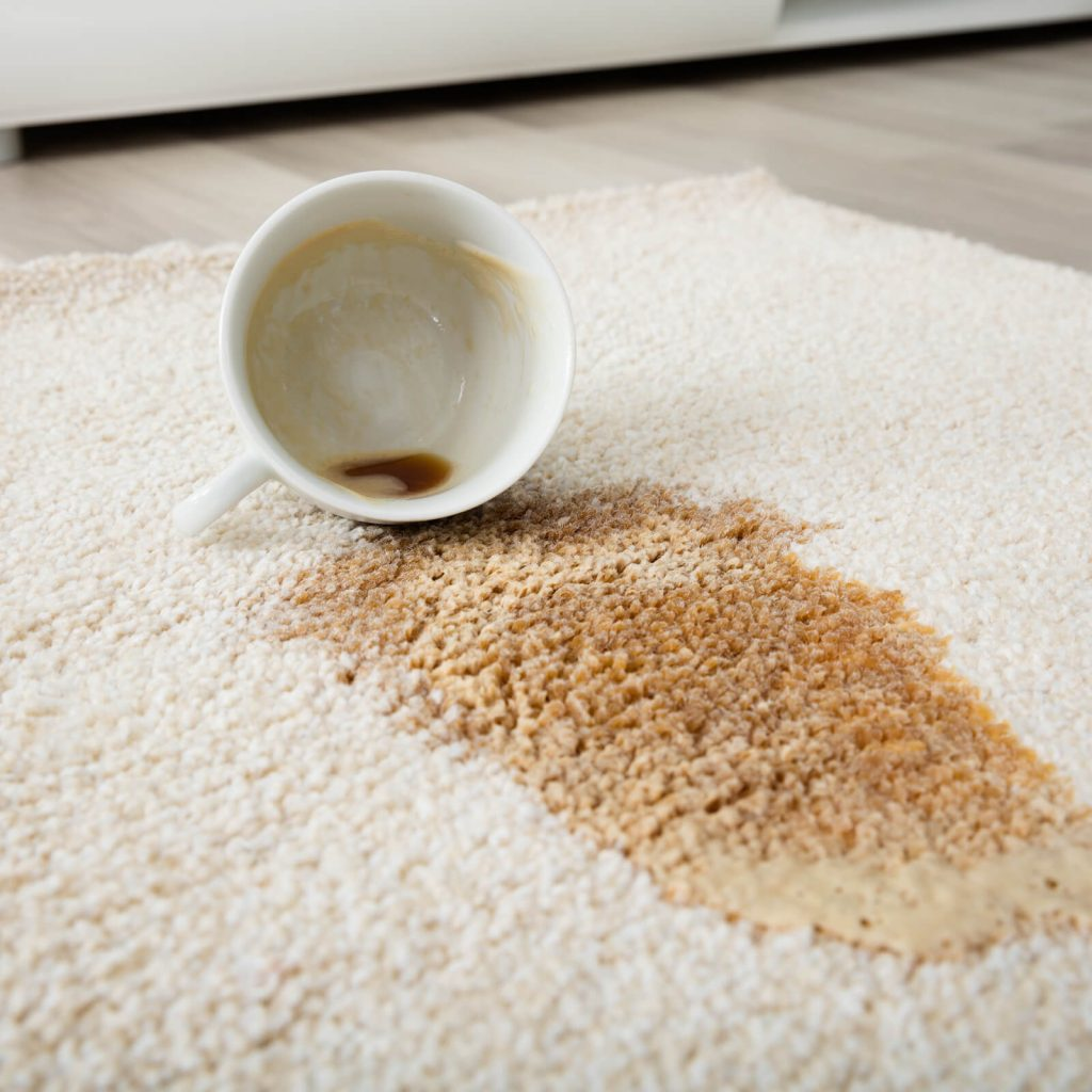 Professional Rug Cleaning   Carpet Your World